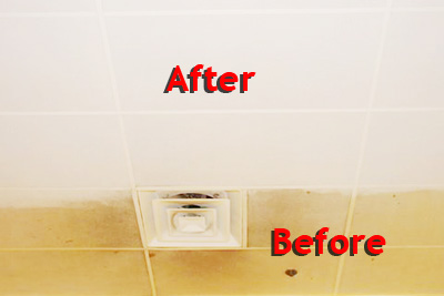Chicago Ceiling Care | Home Page